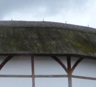 2-reconstructed-globe