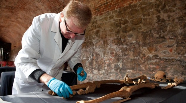 A Black Death skeleton being analysed by an osteoarchaeologist, Charterhouse