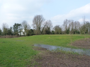 Moat and earthworks, with church of St Mary in background