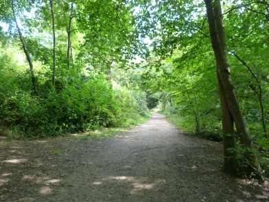 Part of the long approach