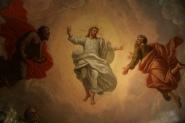 Bellucci's Transfiguration