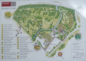 6 - Site plan