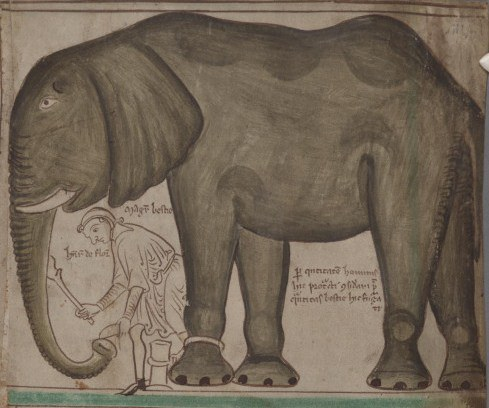 contemporary-drawing-of-the-elephant-and-its-keeper-by-the-monk-and-chronicler-matthew-paris