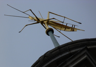 4 - Gresham's grasshopper symbol atop the Royal Exchange